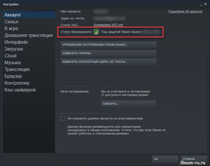 Steam Guard включен